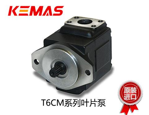 丹尼逊T6CM系列叶片泵