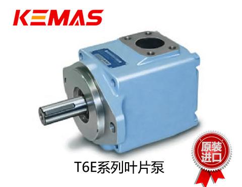 丹尼逊T6E系列叶片泵